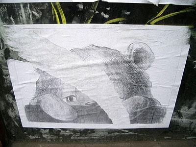 bears_013_400