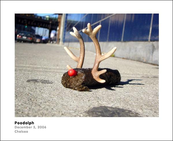 sprinklebrigade_poodolph_600