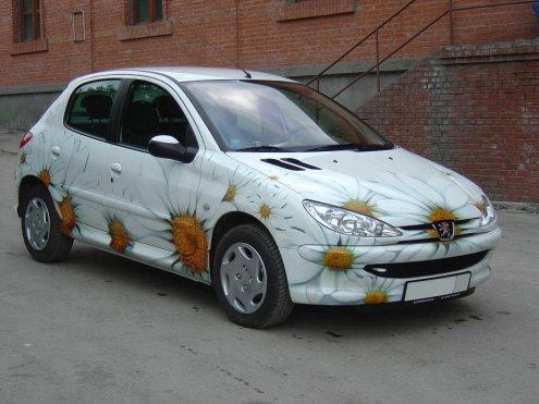 Найти авто с аэрографией ромашек в беларуси